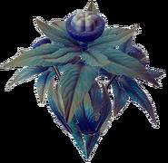 Platin Pflanze