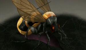 Bee An1