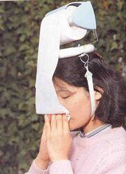 Flu large