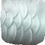 Flying Eel Scales