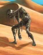 Desert Mummy