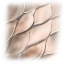 Twitter Fish Scales