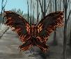 Ember Moth