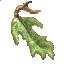 Eureka Leaves