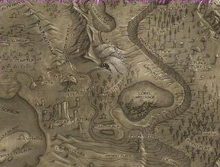 Birch Forest-Map