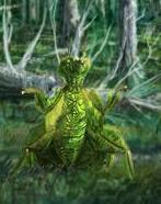 Leafy Mantis