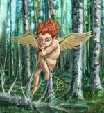 Birch Cupid