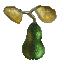 Mini Pears