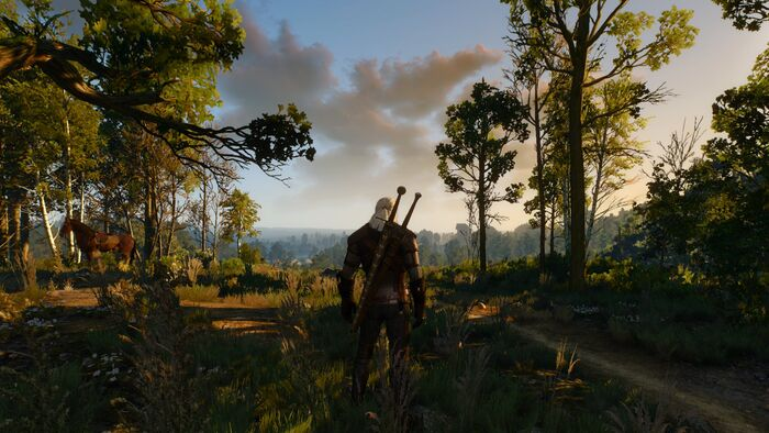 Witcher 3 No Hud