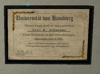 NOLF2 UniversityofHamburg
