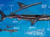 Shark Mini-Sub