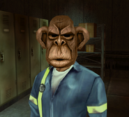 Monkey mask harm