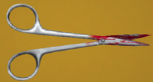 Beths-scissors-0