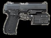 Shooter .45 Breach