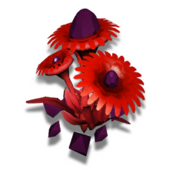 コプライトの花