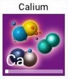 Calium2