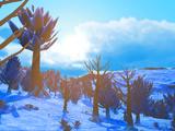 Biome gelé