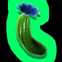 サボテン果肉:Cactus_Flesh_-_Cf