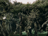 Ent (The Lord of the Rings)