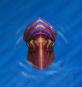 Kraken Age of Mythology