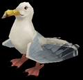 Seagull (World of Warcraft)