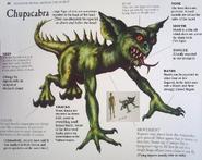Chupacabra Unknown Book