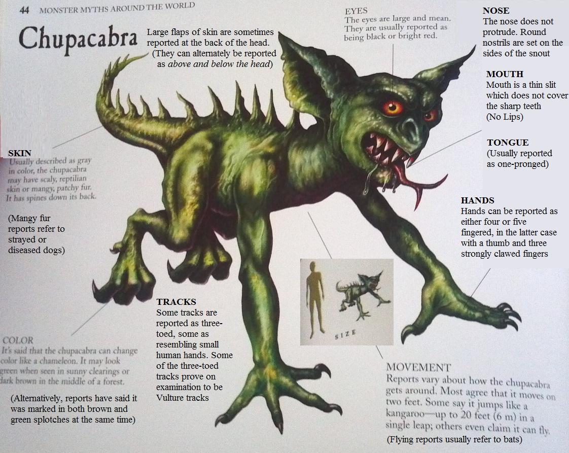 Searching for El Chupacabra (Mysterious Monsters ... |Chupacabra Book