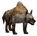 Hyena (Guild Wars)