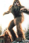 Bigfoot1987