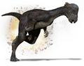 Pachycephalosaurus Primeval