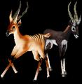 Gazelle (World of Warcraft)