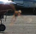 Beast of Macachín Airport