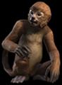 Monkey (Elder Scrolls)