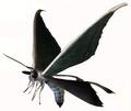 Moth (Resident Evil)
