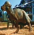 Pachycephalosaurus Jurassic Park