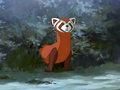 Fire Ferret
