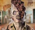 Brain Mushroom Zombie (One Month)