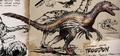 Troodon magnanimus