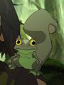 Frog Squirrel
