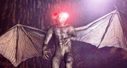 Mothman Mountain Monsters