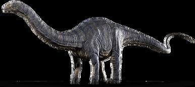 Apatosaurus-info-graphic