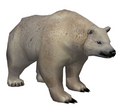 Polar Bear (Guild Wars)