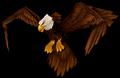 Eagle (World of Warcraft)