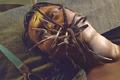 Giant Hookworm