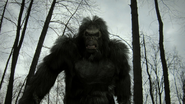 Bigfoot 2012