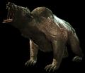 Yao Guai (Fallout 4)
