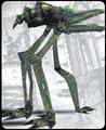 Photosaurus