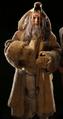 Ice Age Human
