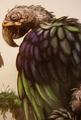 Green Carrion Parrot (Caropsitticus verdens)