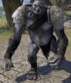 Ogre (Elder Scrolls)